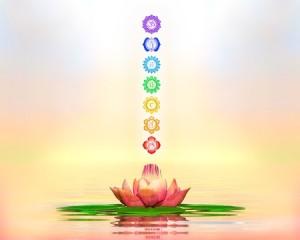 35243755 - sacred lotus and chakras
